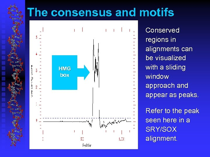 The consensus and motifs HMG box Conserved regions in alignments can be visualized with