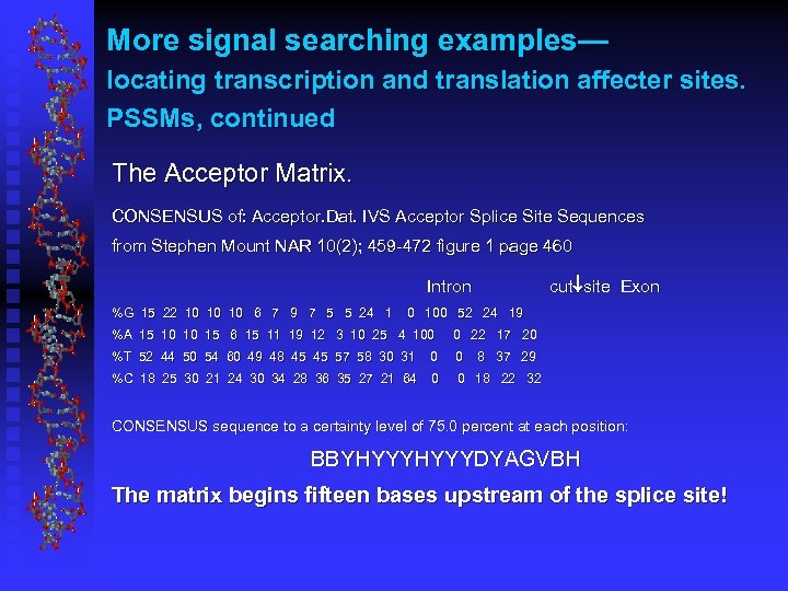 More signal searching examples— locating transcription and translation affecter sites. PSSMs, continued The Acceptor