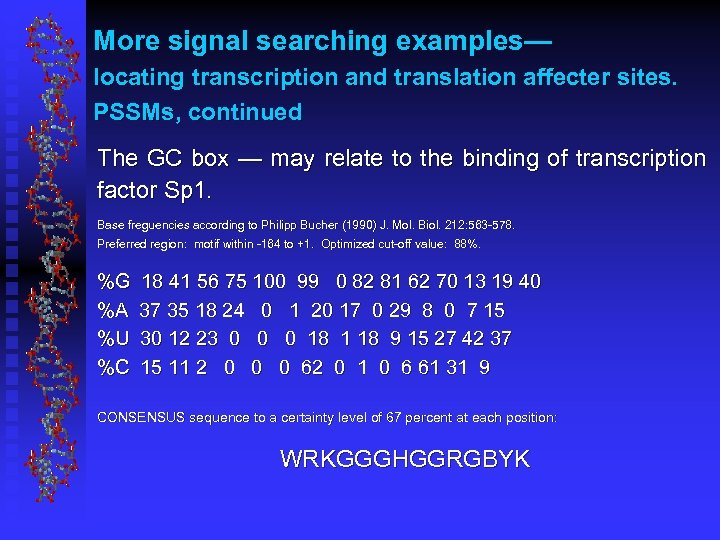 More signal searching examples— locating transcription and translation affecter sites. PSSMs, continued The GC