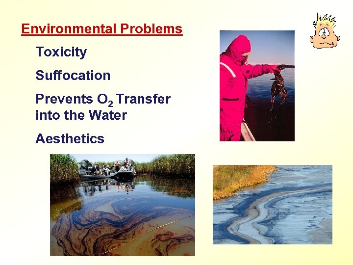 Environmental Problems Toxicity Suffocation Prevents O 2 Transfer into the Water Aesthetics
