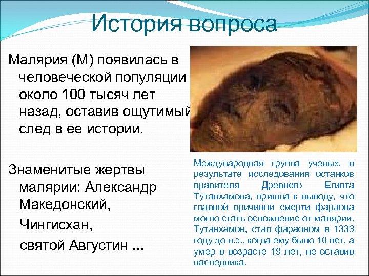 История вопроса Малярия (М) появилась в человеческой популяции около 100 тысяч лет назад, оставив