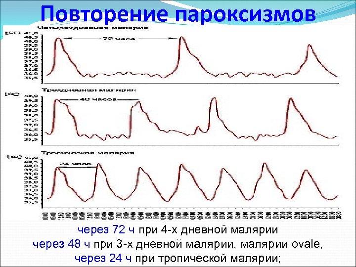 Повторение пароксизмов через 72 ч при 4 -х дневной малярии через 48 ч при