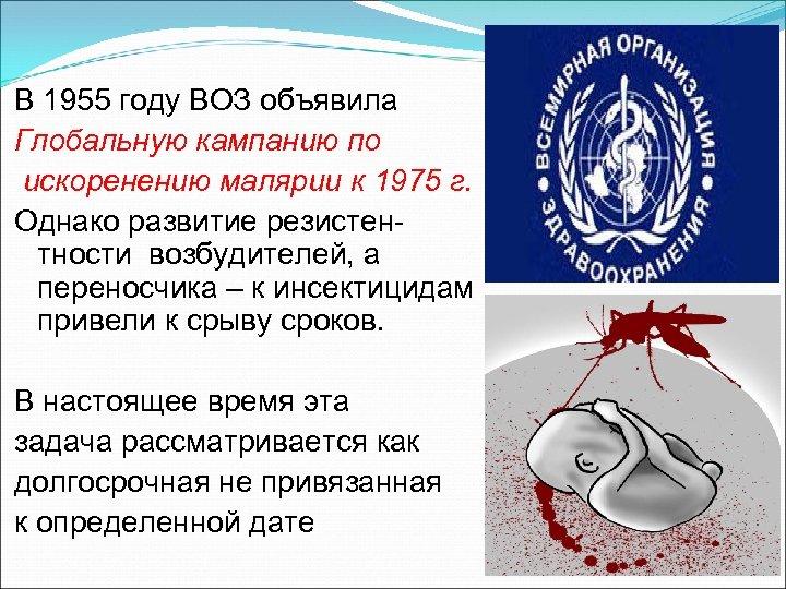 В 1955 году ВОЗ объявила Глобальную кампанию по искоренению малярии к 1975 г. Однако