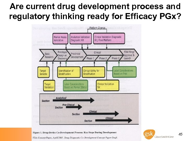 Are current drug development process and regulatory thinking ready for Efficacy PGx? 45