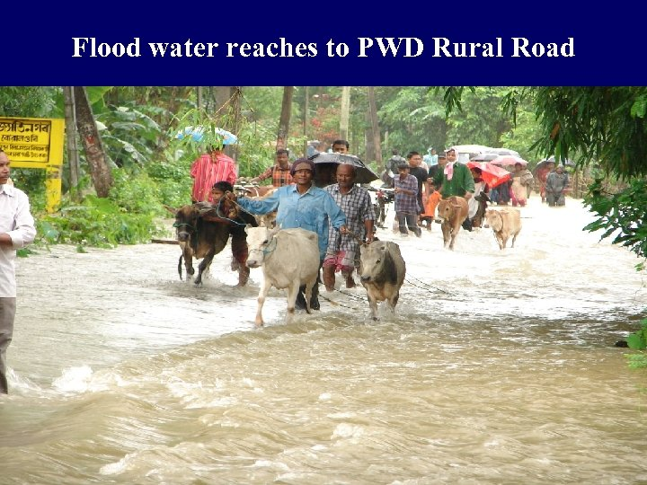 Flood water reaches to PWD Rural Road