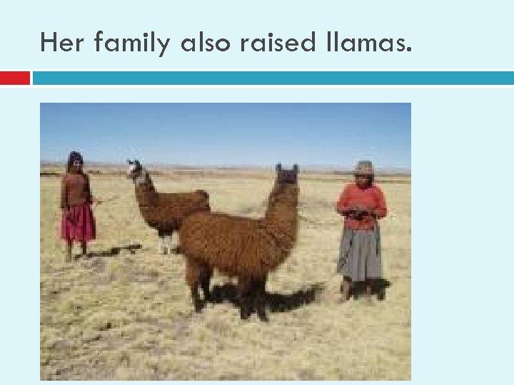 Her family also raised llamas.