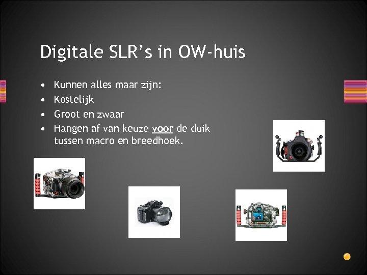 Digitale SLR's in OW-huis • • Kunnen alles maar zijn: Kostelijk Groot en zwaar