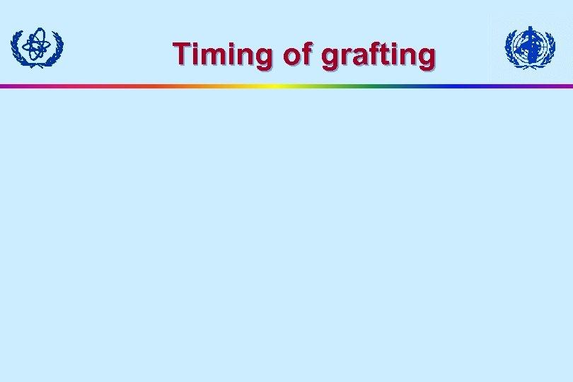 Timing of grafting