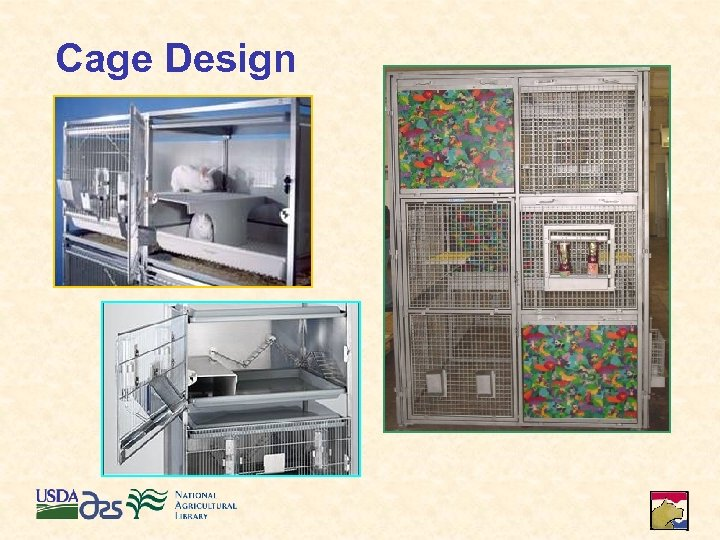 Cage Design