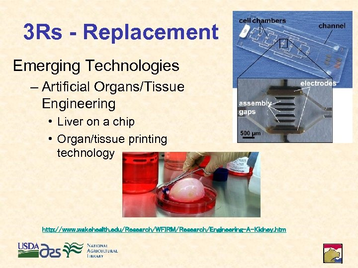 3 Rs - Replacement Emerging Technologies – Artificial Organs/Tissue Engineering • Liver on a