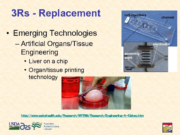 3 Rs - Replacement • Emerging Technologies – Artificial Organs/Tissue Engineering • Liver on