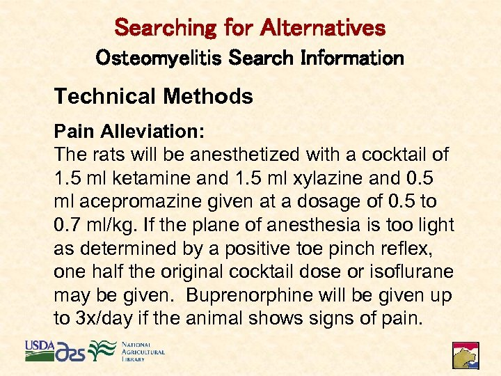 Searching for Alternatives Osteomyelitis Search Information Technical Methods Pain Alleviation: The rats will be