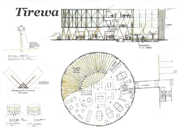 Tīrewa A community space comments on cultural history Derived from the structure of the