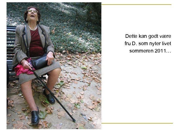 Dette kan godt være fru D. som nyter livet sommeren 2011…