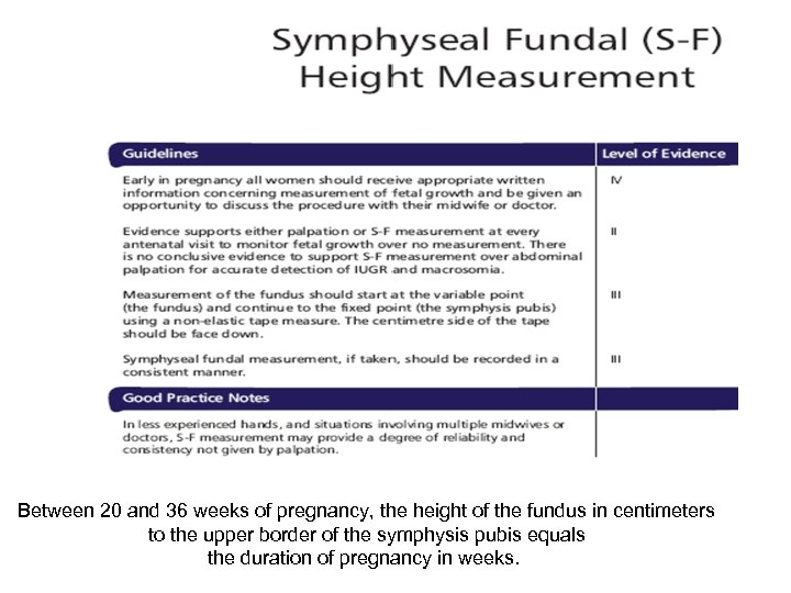 Between 20 and 36 weeks of pregnancy, the height of the fundus in centimeters