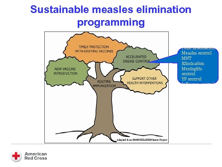 Sustainable measles elimination programming Polio Eradication Measles control MNT Elimination Meningitis control YF control