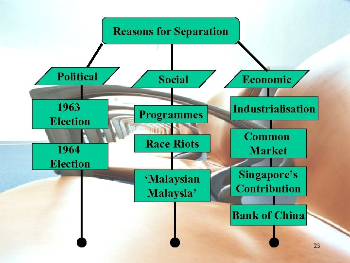 Reasons for Separation Political 1963 Election 1964 Election Social Programmes Economic Industrialisation Race Riots