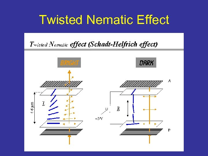 Twisted Nematic Effect