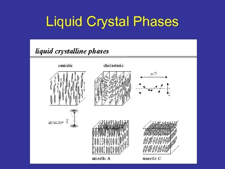 Liquid Crystal Phases