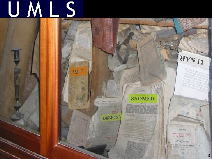 UMLS HVN 11 HL 7 SNOMED DEMONS 3