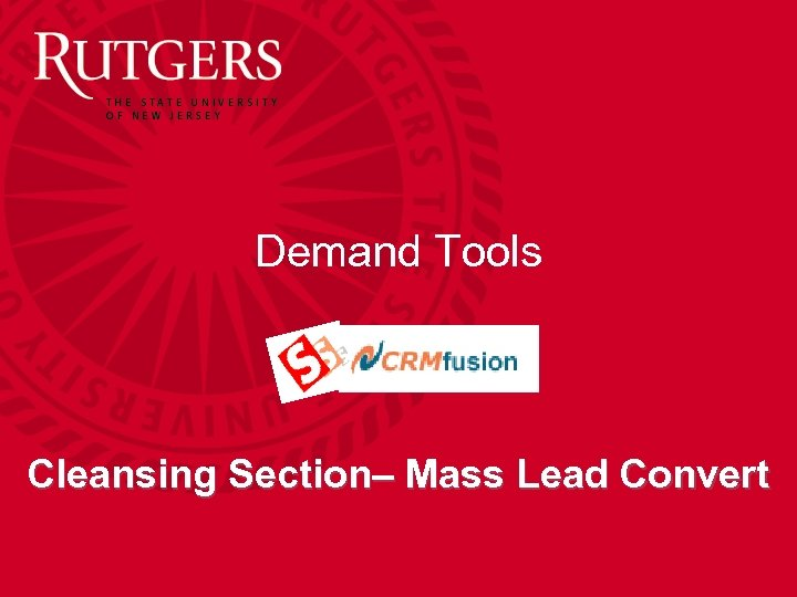 Demand Tools Cleansing Section– Mass Lead Convert