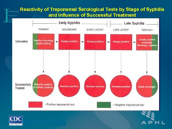 Reactivity of Treponemal Serological Tests by Stage of Syphilis and Influence of Successful Treatment