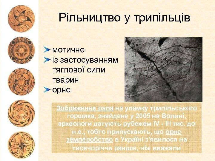 Рільництво у трипільців мотичне із застосуванням тяглової сили тварин орне Зображення рала на уламку