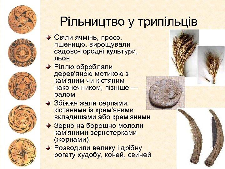 Рільництво у трипільців Сіяли ячмінь, просо, пшеницю, вирощували садово-городні культури, льон Ріллю обробляли дерев'яною