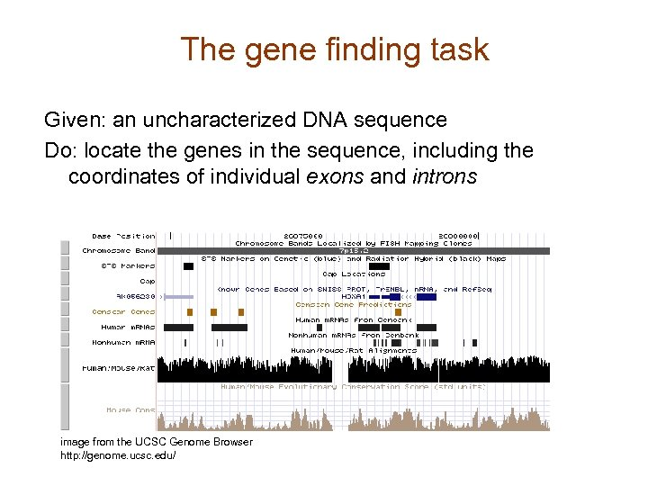 The gene finding task Given: an uncharacterized DNA sequence Do: locate the genes in