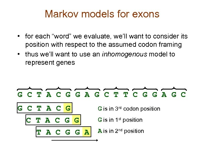 "Markov models for exons • for each ""word"" we evaluate, we'll want to consider"