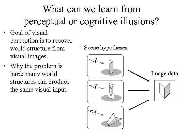 What can we learn from perceptual or cognitive illusions? • Goal of visual perception