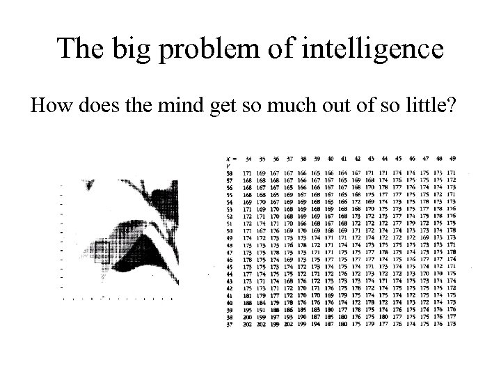 The big problem of intelligence How does the mind get so much out of