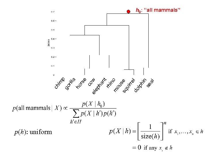 p(h): uniform rs e co w el ep ha nt rh in m o