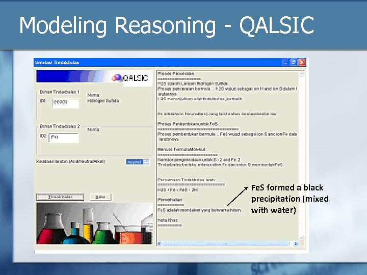 Modeling Reasoning - QALSIC Fe. S formed a black precipitation (mixed with water)