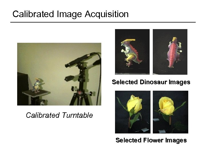 Calibrated Image Acquisition Selected Dinosaur Images Calibrated Turntable 360° rotation (21 images) Selected Flower