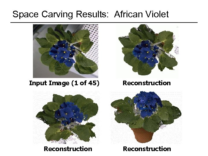 Space Carving Results: African Violet Input Image (1 of 45) Reconstruction