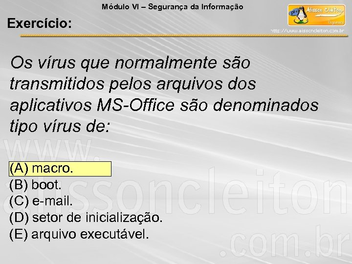 Módulo VI – Segurança da Informação Exercício: Os vírus que normalmente são transmitidos pelos