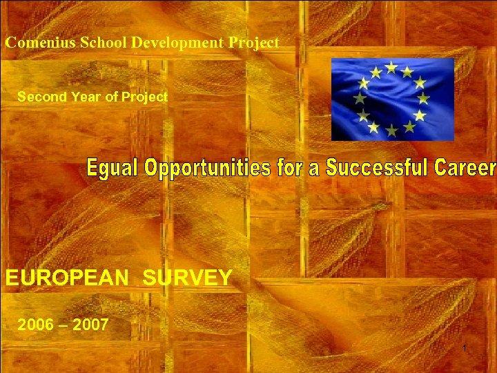 Comenius School Development Project Second Year of Project EUROPEAN SURVEY 2006 – 2007 1