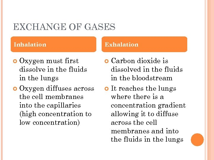 EXCHANGE OF GASES Inhalation Exhalation Oxygen must first dissolve in the fluids in the