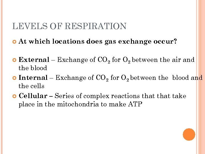 LEVELS OF RESPIRATION At which locations does gas exchange occur? External – Exchange of