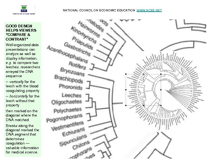 """NATIONAL COUNCIL ON ECONOMIC EDUCATION WWW. NCEE. NET GOOD DESIGN HELPS VIEWERS """"COMPARE &"""