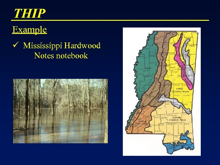 THIP Example ü Mississippi Hardwood Notes notebook