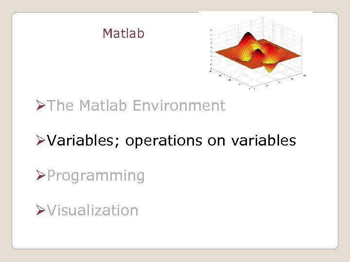 Matlab ØThe Matlab Environment ØVariables; operations on variables ØProgramming ØVisualization