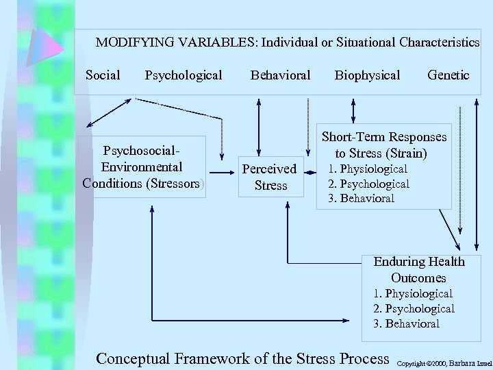 MODIFYING VARIABLES: Individual or Situational Characteristics Social Psychological Psychosocial. Environmental Conditions (Stressors) Behavioral Biophysical