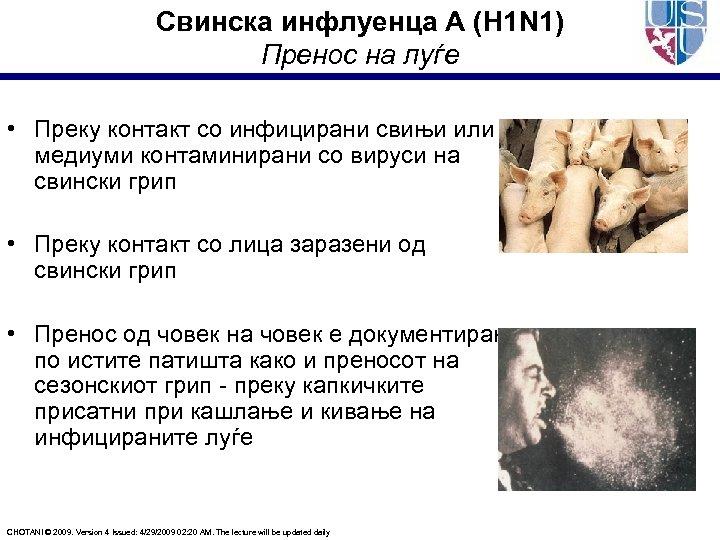 Свинска инфлуенца А (H 1 N 1) Пренос на луѓе • Преку контакт со