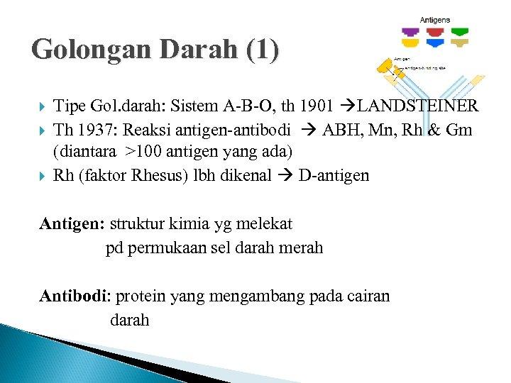 Golongan Darah (1) Tipe Gol. darah: Sistem A-B-O, th 1901 LANDSTEINER Th 1937: Reaksi