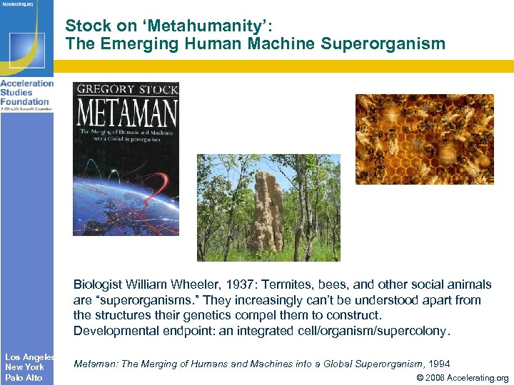 Stock on 'Metahumanity': The Emerging Human Machine Superorganism Biologist William Wheeler, 1937: Termites, bees,