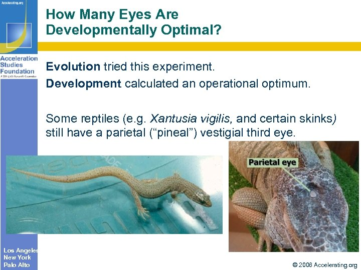 How Many Eyes Are Developmentally Optimal? Evolution tried this experiment. Development calculated an operational