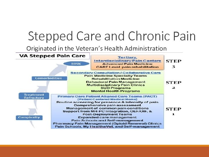 Stepped Care and Chronic Pain Originated in the Veteran's Health Administration