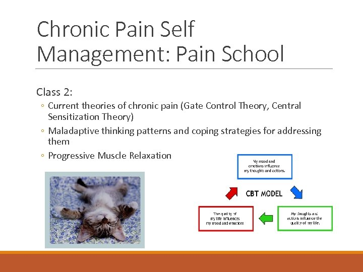 Chronic Pain Self Management: Pain School Class 2: ◦ Current theories of chronic pain